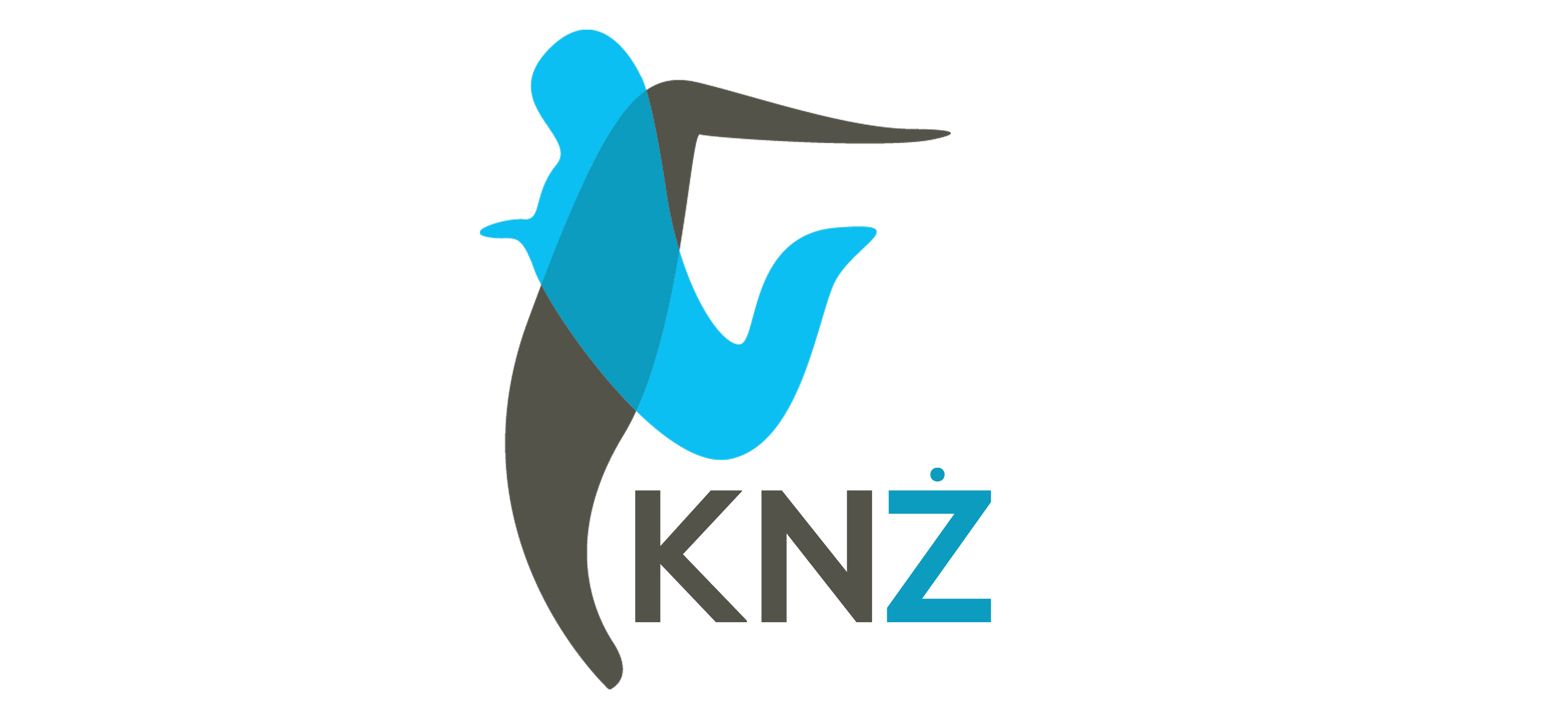 cropped-KNZ-Short-Logo.png